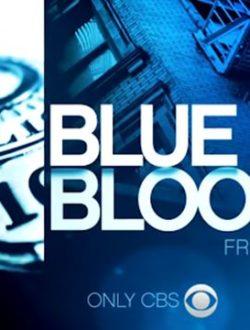 Blue Bloods Season 5