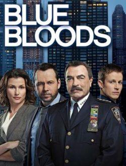 Blue Bloods Season 6