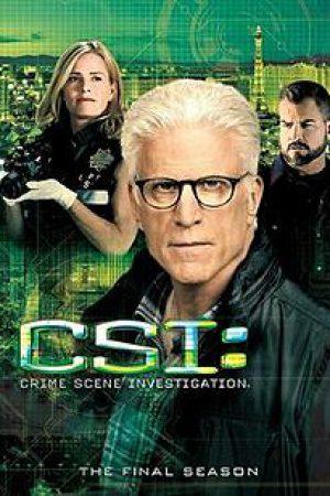 CSI Crime Scene Investigation Season 15