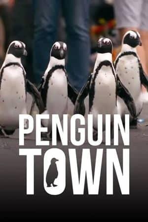 Penguins Town Season 1